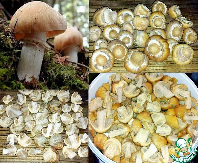 Главный ингредиент для начинки - гриб колпак кольчатый. Грибы очистить от плёнок. Разрезать и вымыть. Эти грибы не вымачивают и их можно не варить.