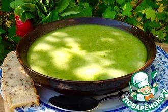 Бархатный весенний суп