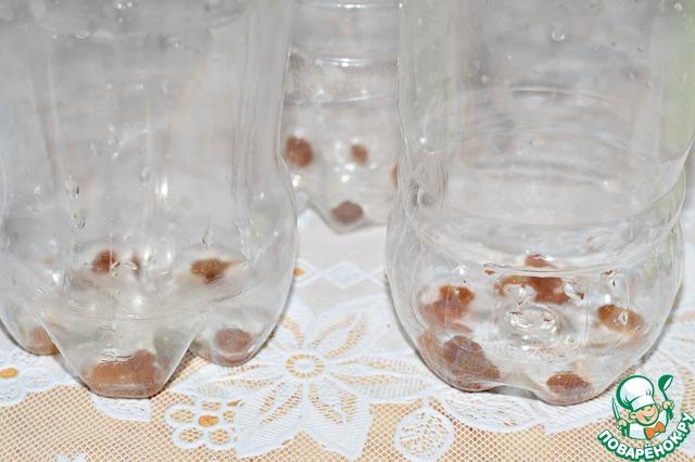 Квас я разливаю в пластиковые бутылки: и всегда есть в наличии, и в холодильнике хранить удобно. В каждую бутылку положить несколько изюминок. Изюм придаст нужную резкость квасу.