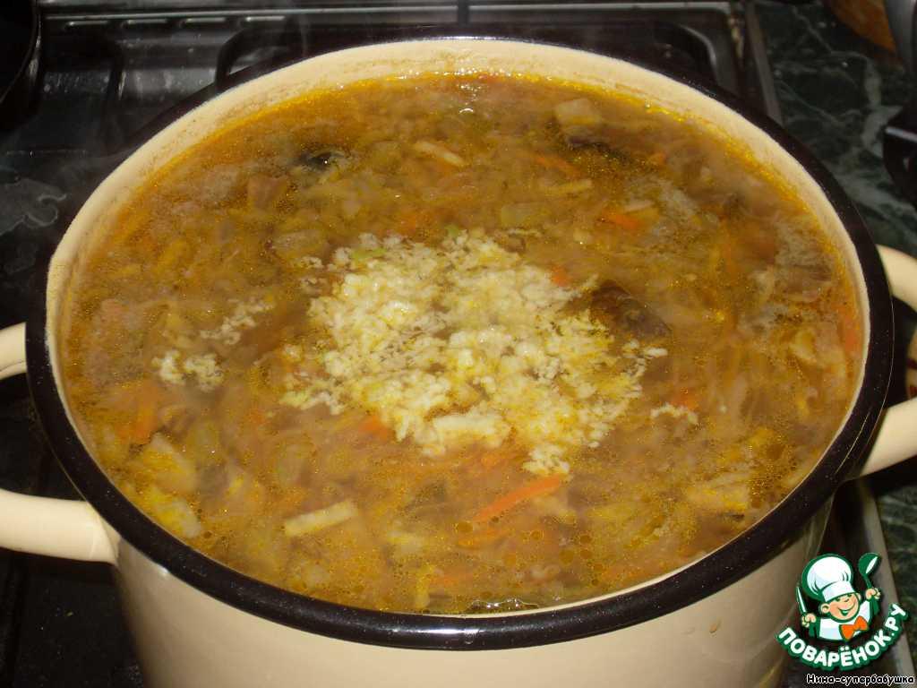 Чеснок очистить, пропустить через пресс и добавить в готовый суп. Снять кастрюлю с огня, накрыть крышкой и дать настояться.