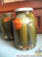 Огурцы, маринованные с луком и морковью