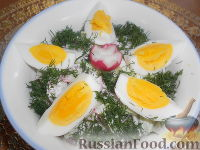 Салат из редиса с огурцами и со сметаной