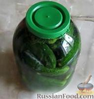 Огурцы соленые (холодный способ)