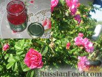 Заготавливаем чайную розу. Лепестки розы, перетертые с сахаром.