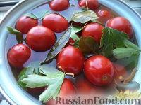 Соленые помидоры с горчицей (старинный рецепт)