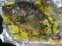 Карп в сметане с овощами, запеченный в духовке