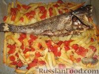 Морской окунь, запеченный с картофелем