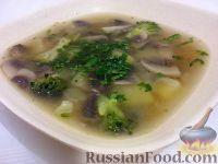 Суп из шампиньонов и брокколи
